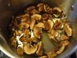 risotto ai funghi porcini secchi